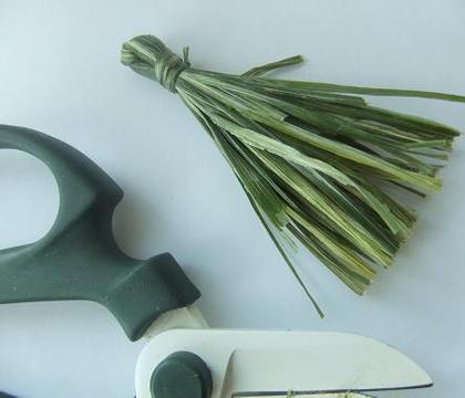 Tie an Iris leaf tassel