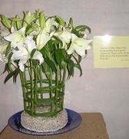 Flower Festival, Methodist Church Hall, Durbanville, South Africa: Two are better than one