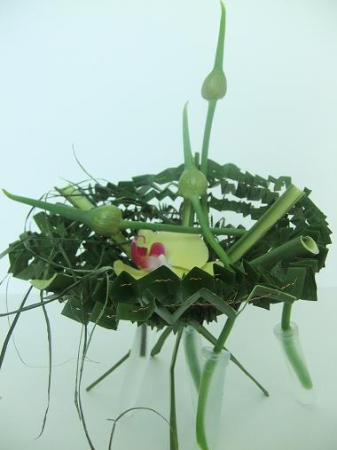 Pleated Pleasure basket from Aspidistra leaves