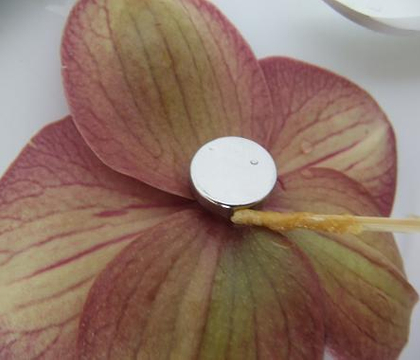 Removing Oasis Floral Adhesive glue spills