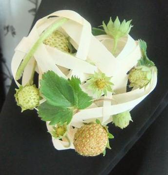 Strawberry and Kyogi paper Corsage