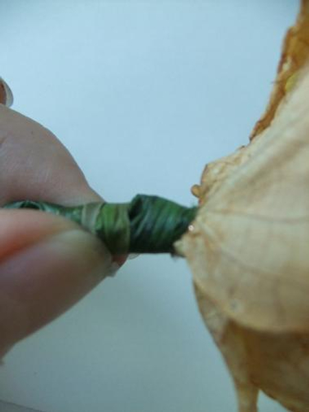 Wrap the stem with lily grass