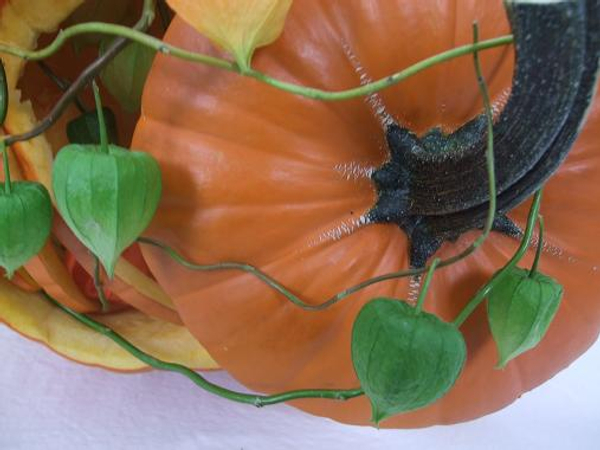 Chinese lantern on willow twigs twining around the pumpkin lid