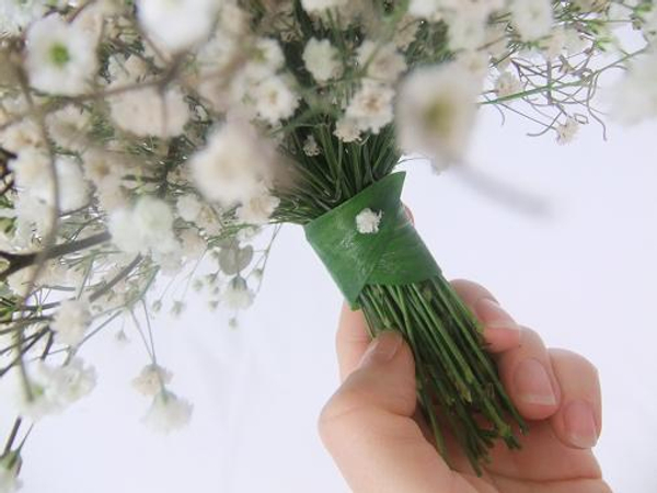 Gypsophila stems tied together