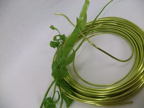 All you need for this project is a few stems of willow and wire