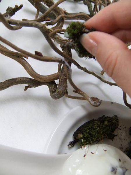 Paint the wreath with yogurt using the moss as a brush on the places you want the moss to grow