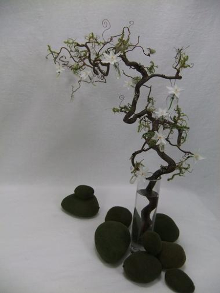 Floral Art design Hazel twig with Lichen, moss and paper whites
