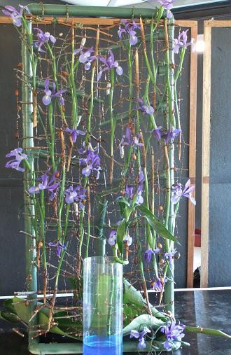 Iris - Dutch Iris or widow iris are the best known varieties used as cut flowers