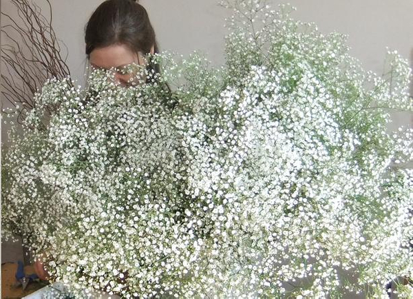 Using masses of gypsophila for a Floral Art table setting