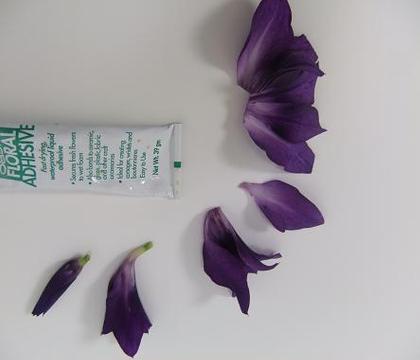 Gladiolus Composite