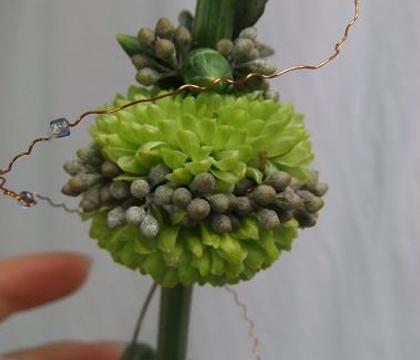 Pompon Chrysanthemum, bud and eucalyptus pom-poms