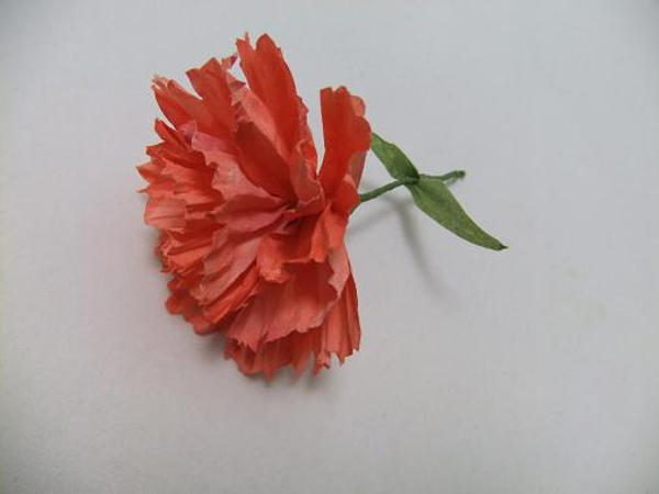 Coffee filter paper carnation
