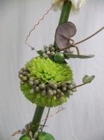 Designing Body Blooms