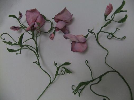 Tutorials paper flowers sweet pea coffee filter flowers mightylinksfo