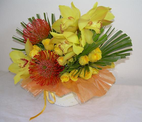 Cymbidium orchid arrangement in a Papier Mache container