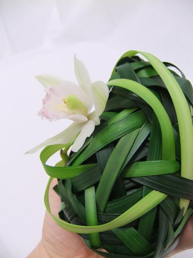 Place an orchid in a test tube and insert it into the grass pebble.