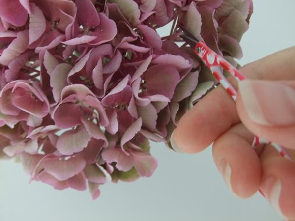 Snip the individual flowers from the hydrangea mop head.