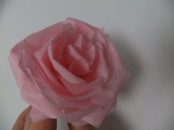 Spiral rolled tissue paper rose.