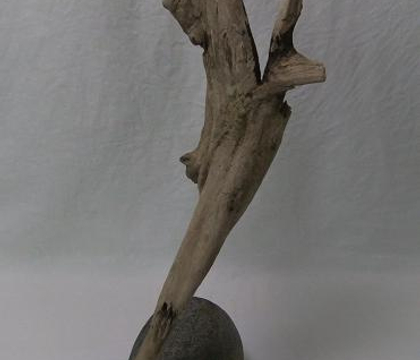 Driftwood precariously perched on the edge of a pebble