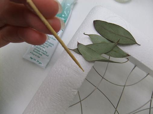 Glue dried Eucalyptus leaves to the Styrofoam frame.