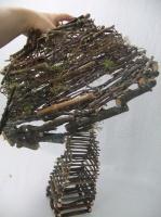 Twig mushroom