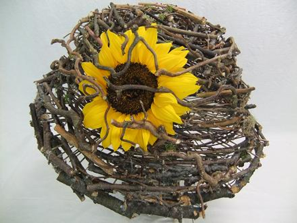 Sunflower on the twig mushroom cap.