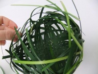 Weaving a ball shaped Dew-drop Catcher from grass