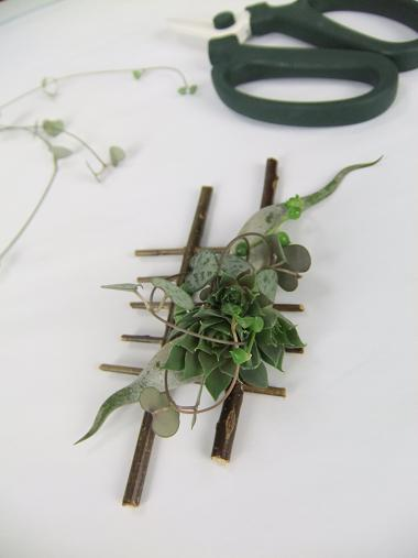 Succulent and Air Plant Boutonniere.