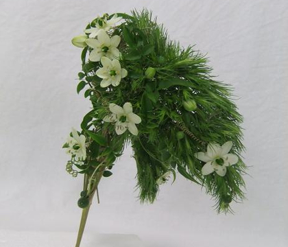 Ornithogalum - The Afrikaans name is tjienkerientjee (named after the sound the stems make when rubbing together in the wind) Chincherinchee, wonder-flower (because they last so long), star-of-Bethlehem (biblical reference to the Christmas star)