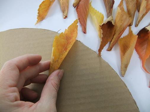 Glue the leaves to the outer edge of the cardboard.