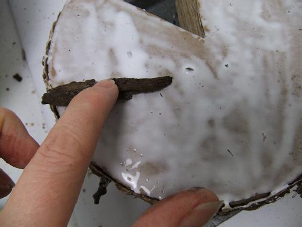 Cover the cardboard cake with glue and add the bark.