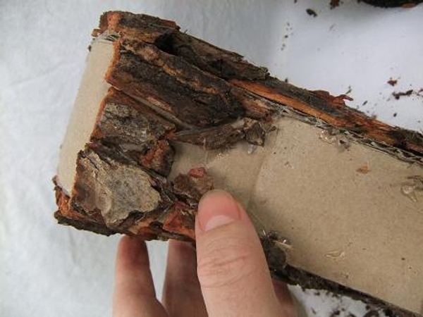 Cover the inside surface with bark