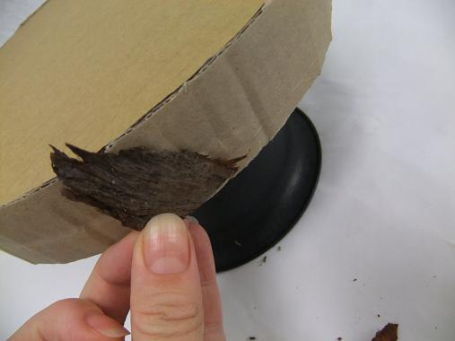 Glue chips of bark to the edge