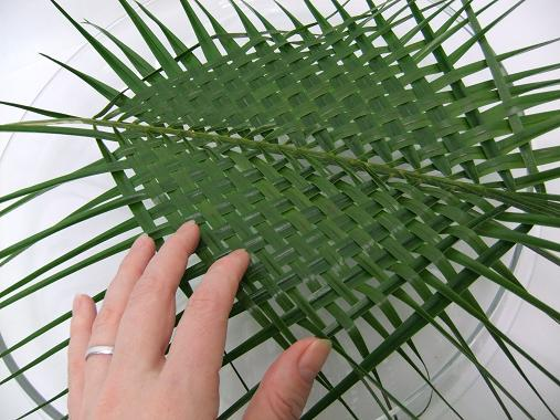 Two woven palm leaves ready to design with.