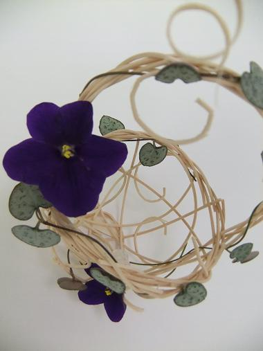 African Violets and Rosary vine on a rattan basket.