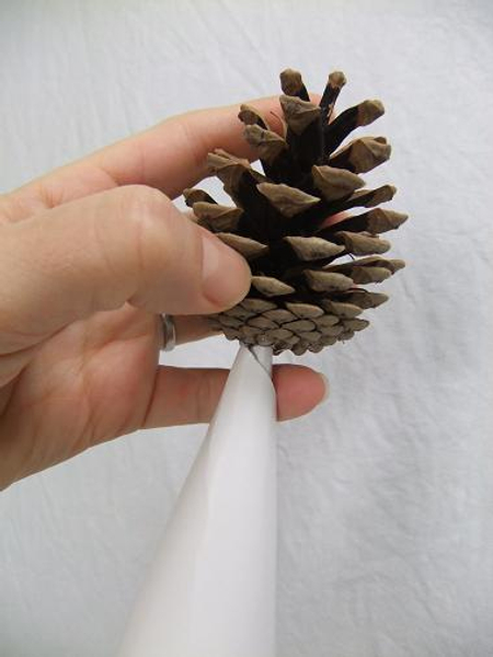 Glue the first pine cone to the paper cone.