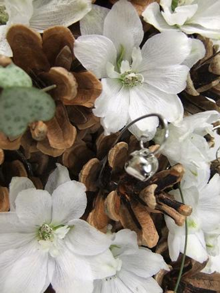 White delphinium and pinecone