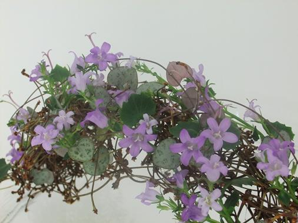 Add a few rosary vine stems to curl over the rainbow.jpg
