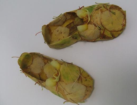 Autumn leaf ballet slippers