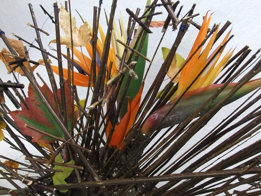 Bird of Paradise and fall leaves