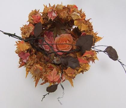 As the leaves melt away