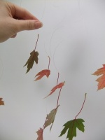 Hanging leaves from a Hazel twig top bar