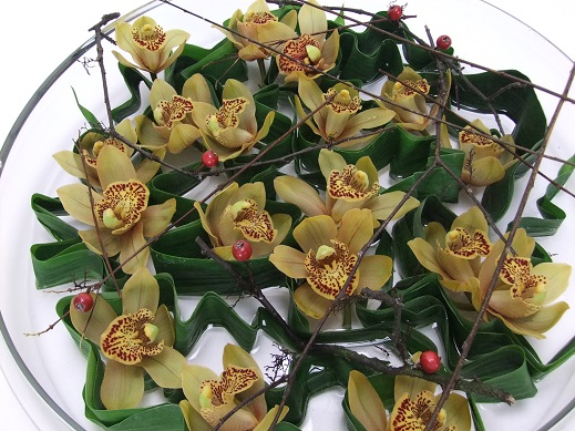 Cymbidium orchid design