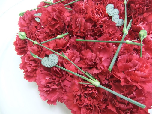 Carnations and rosary vine.