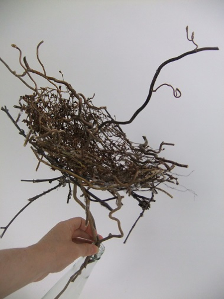 Dried twig nest ready to design with