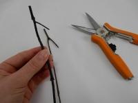 Twig test tube swing
