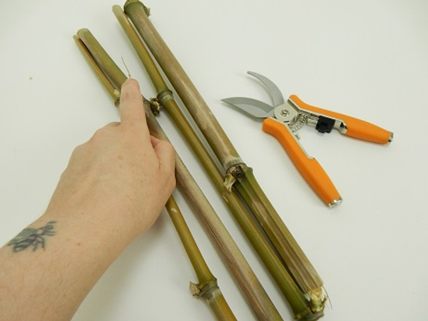 Cut 4 thick pieces om bamboo