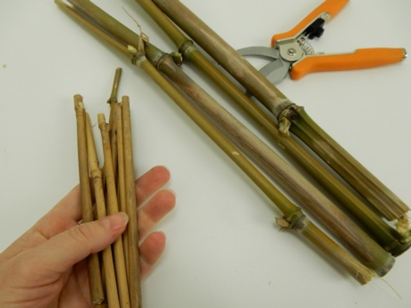 Cut 8 thinner pieces of bamboo.