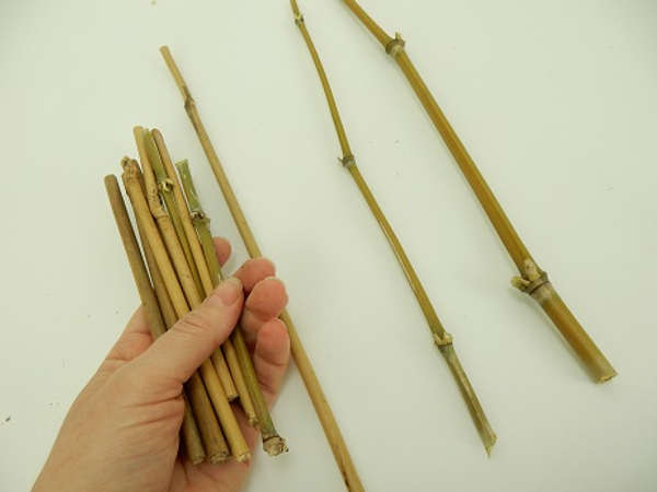 Cut the bamboo into three long and a few shorter pieces