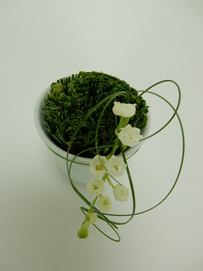 Lily of the valley and grass